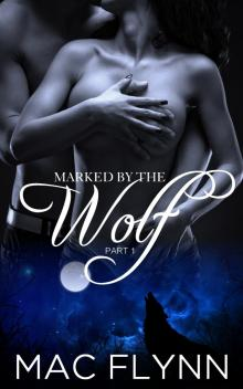Marked By the Wolf: Part 1 (Werewolf Shifter Romance)