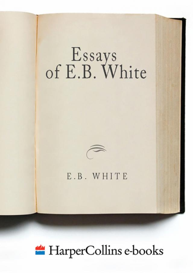 Essays of eb white afternoon of an american boy esl creative essay ghostwriters services for masters