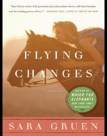 Flying Changes