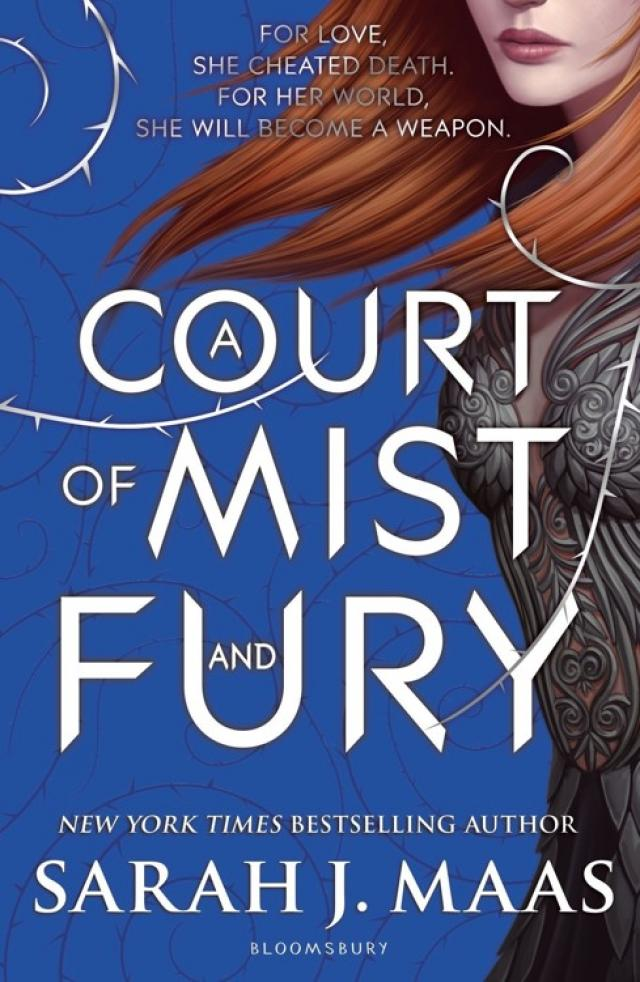 Read A Court Of Mist And Fury Online Read Free Novel Read Light